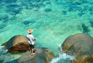 Best time to go fishing in the Seychelles